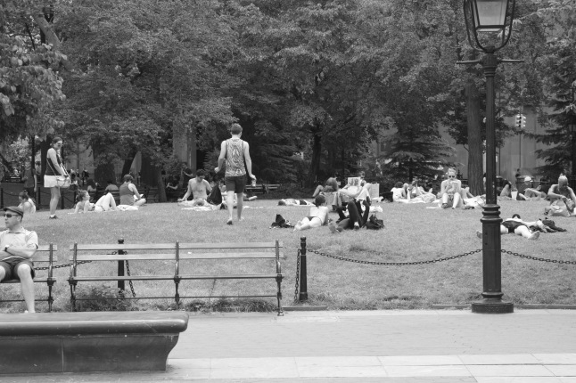 Park-goers lounge in the sunshine – a classic American park scene