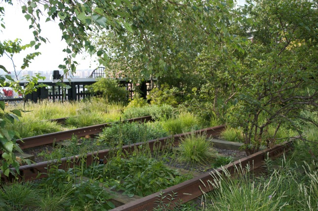 I'll admit I was a bit dismayed by the amount of construction visible surrounding the High Line, but I found scenes like this – with the shrubbery growing all over the old tracks – positively charming.